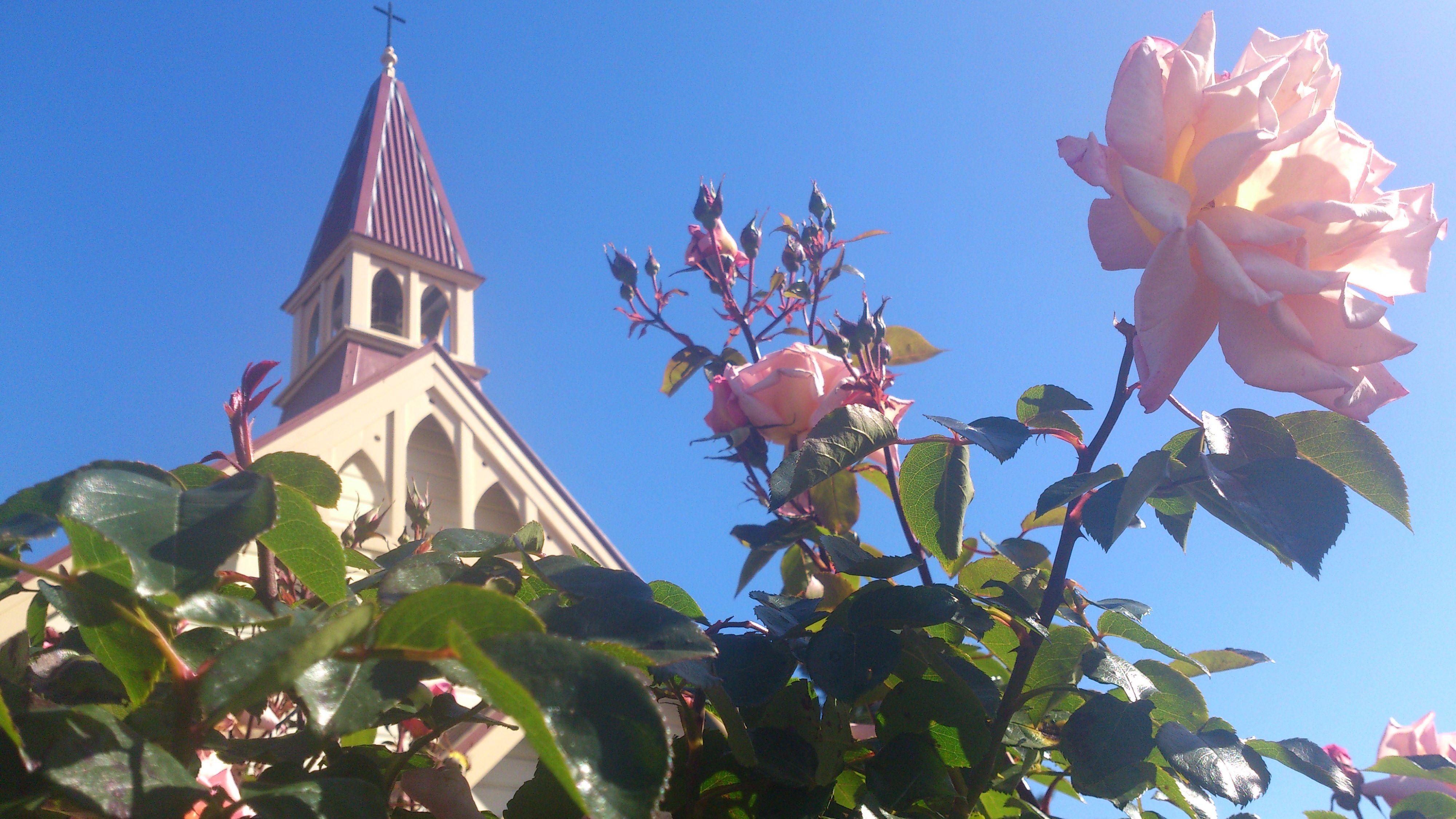 The Chapel of St Francis in #upperhutt #wellington #newzealand