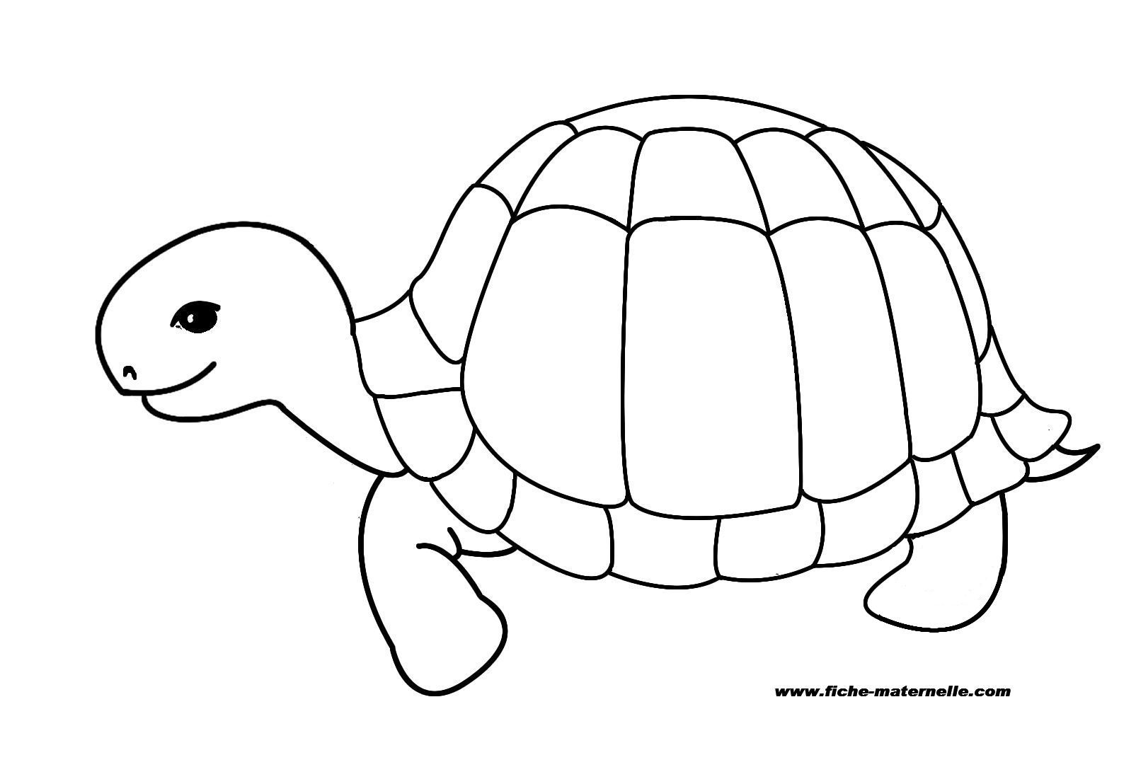 coloriage tortue colorier dessin imprimer - Dessin Colorier