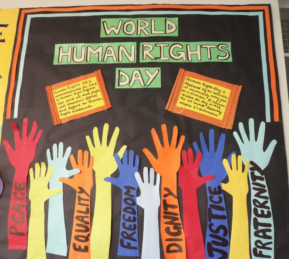 Pin On Human Right Day