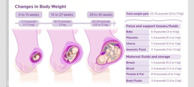 Excited Average weight gain at 26 weeks pregnant