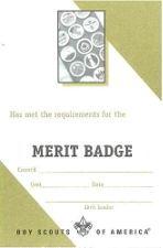Boy Scout Merit Badge Pocket Certificate Single Merit Badge Boy Scouts Merit Badges Girl Scout Leader