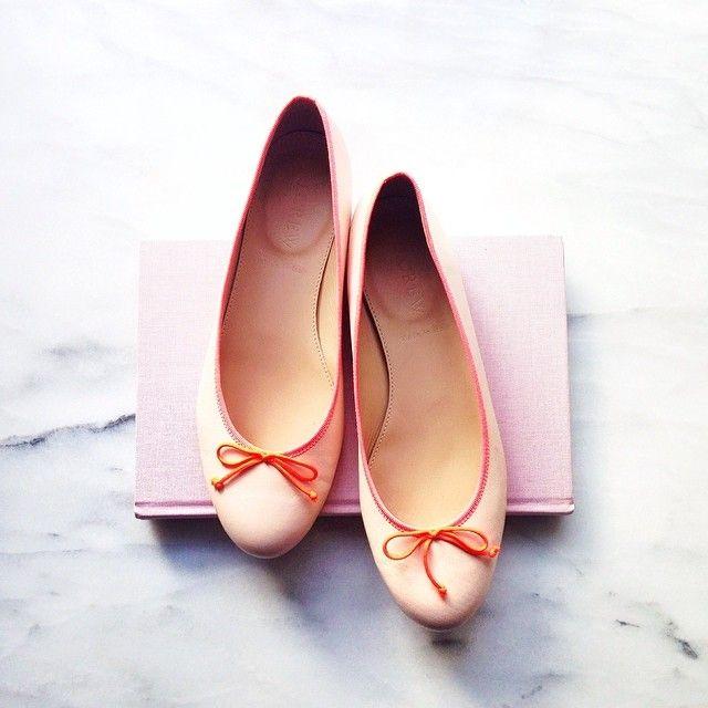 flamingo pinks Web Instagram User » Followgram