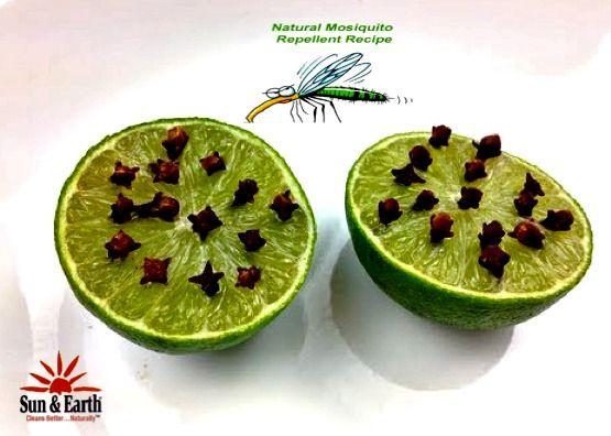lime mot myggor