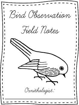 Bird watching is an easy integrated science activity for