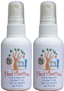 Amazon Com Loving Naturals Hand Sanitizer Spray Two Ounces 100