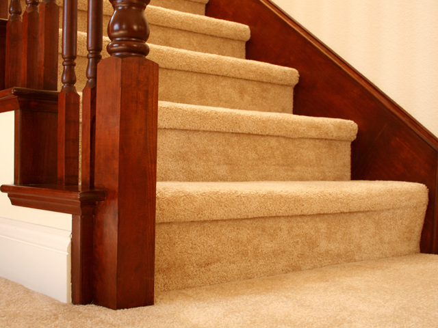 Regular, Professional Carpet Cleaning Is The Best Way To Protect The Carpets  In Your Home. Established In 2001 To Clean Carpets In Swindon Our Expertise  Is ...