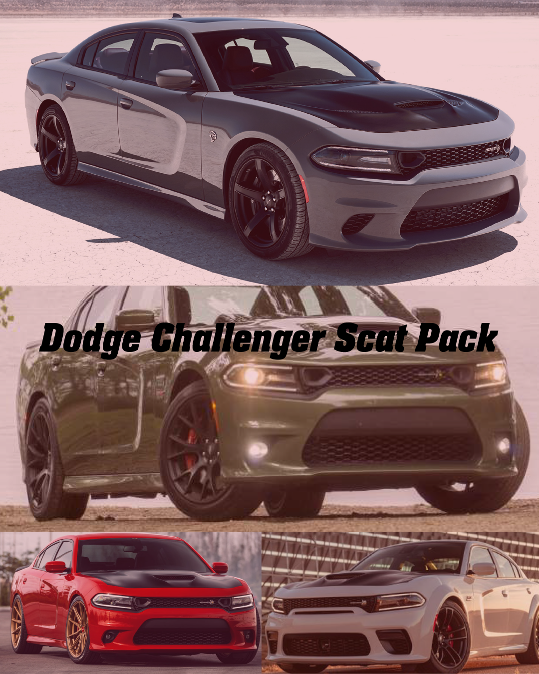 2020 Dodge Charger Scat Pack Overview Of Features Specs Price In 2020 Dodge Challenger Scat Pack Scat Pack Dodge Charger