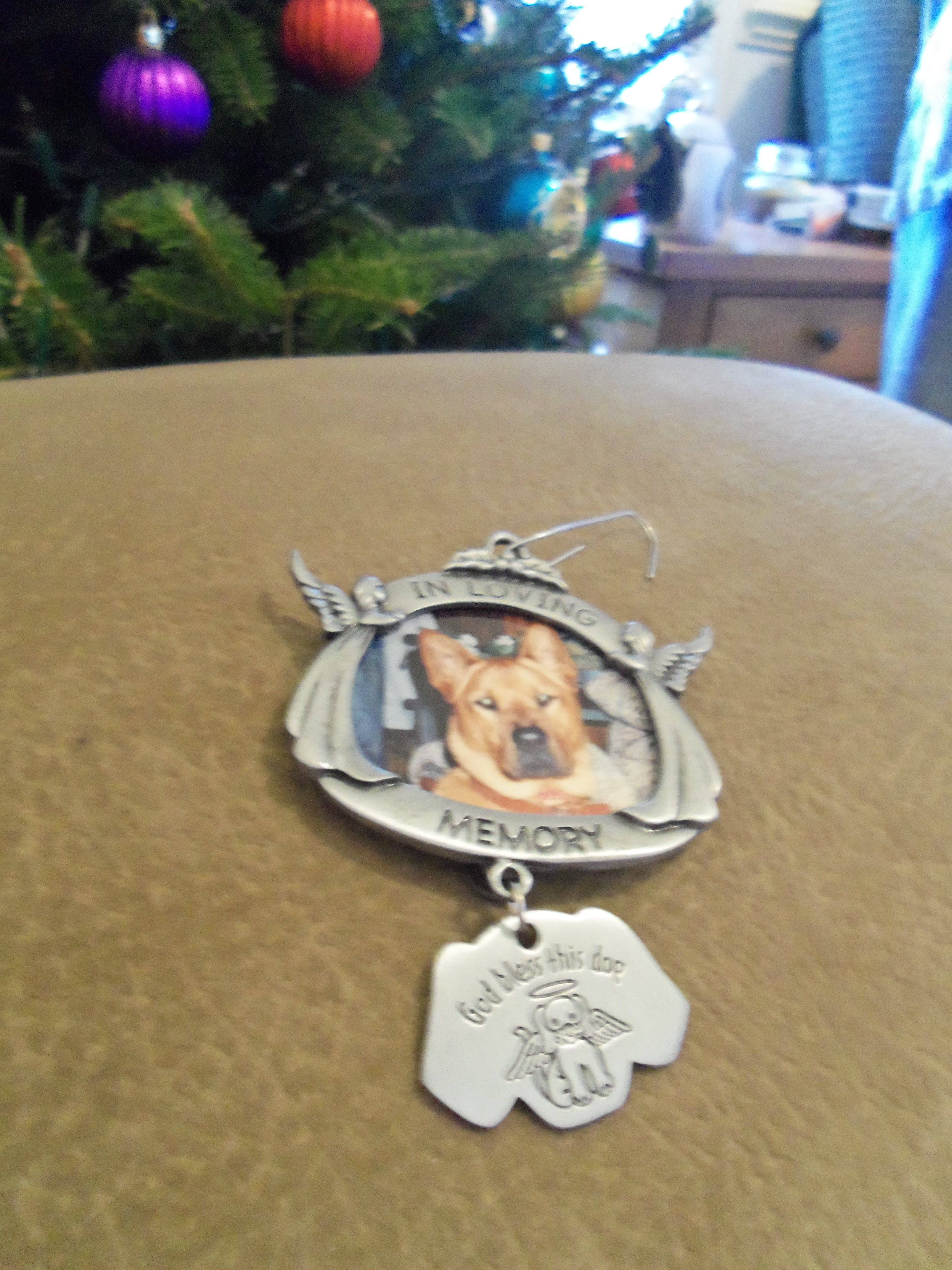 Memorial Ornament I purchased for a deceased pet 2012