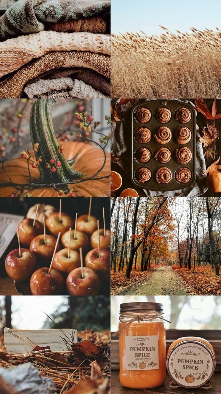 Image in ☕ 🎃🍂 🌰autumn-automne and  ... collection