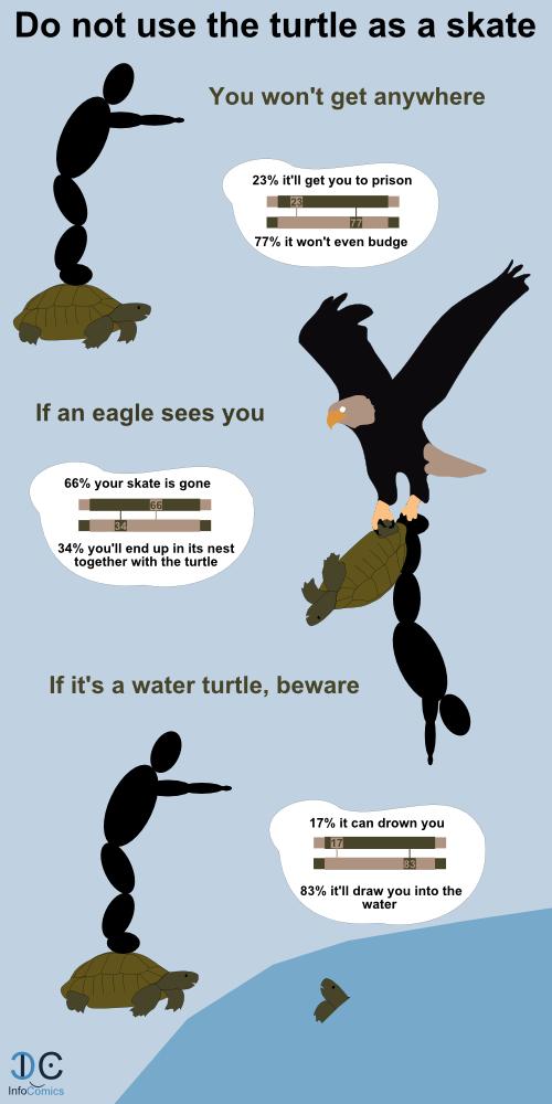 Don T Skate On A Turtle Infocomics Turtle Skate