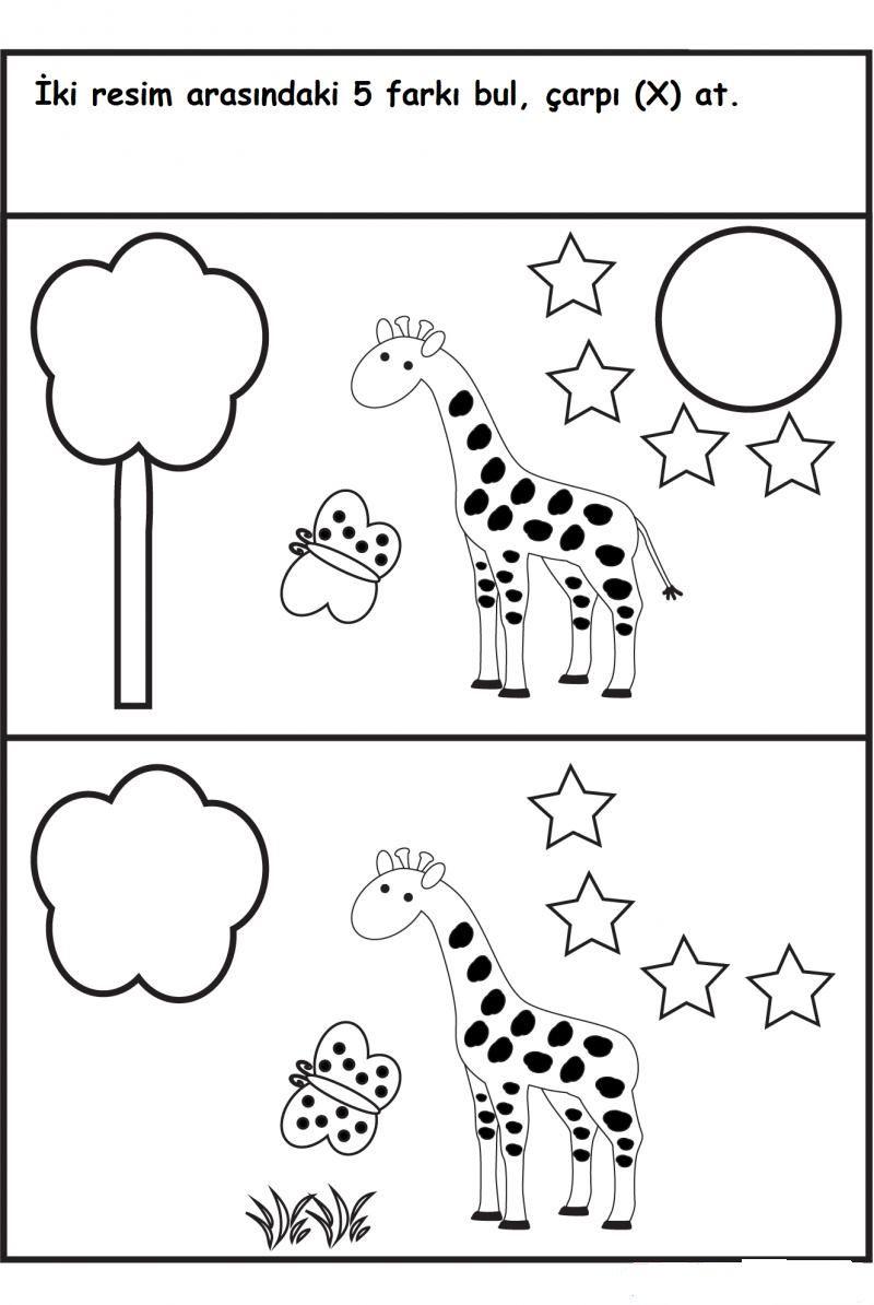 Okulöncesi Farkıbul ödev Pinterest Worksheets Kindergarten