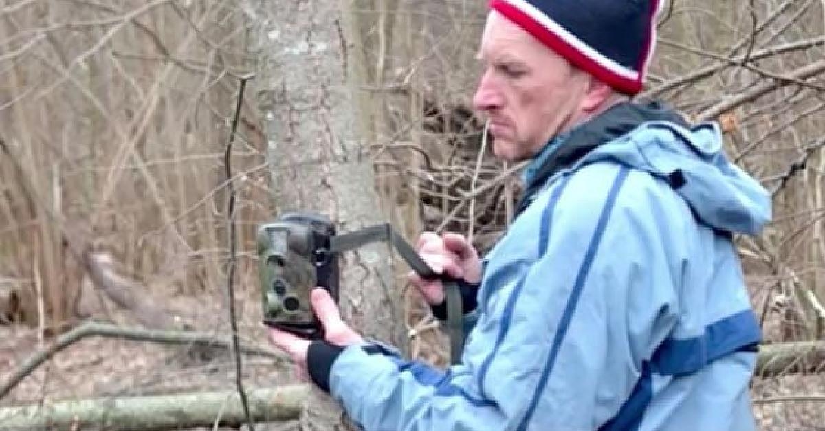 Wald von Tschernobyl: Biologe fotografiert seltene Tiere - Video - FOCUS Online