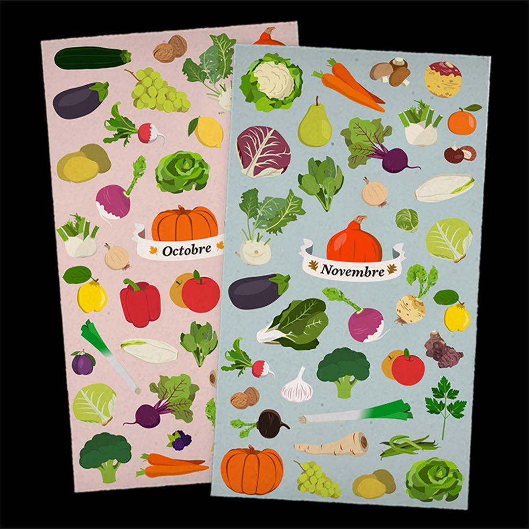 Illustrations des différents fruits et légumes de saison d