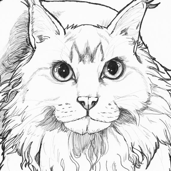 custom coloring pages # 17