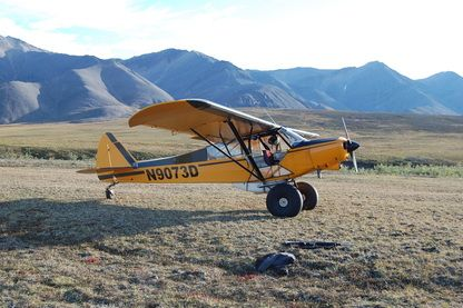 Pin On Bush Planes