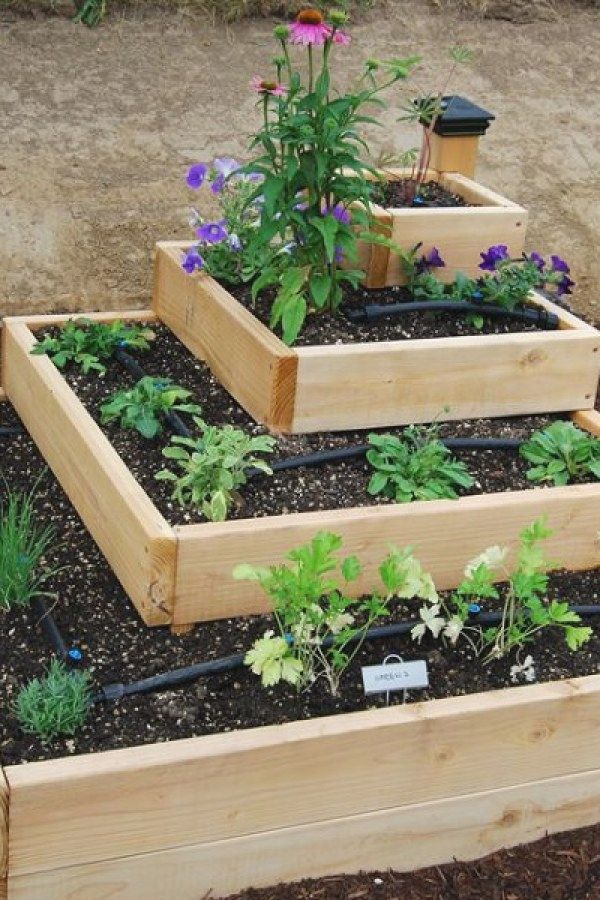 50 Awesome Diy Raised Garden Bed Ideas To Try For Your Yard Raised Garden Bed Ideas Des Veggie Garden Design Raised Vegetable Garden Designs Diy Raised Garden