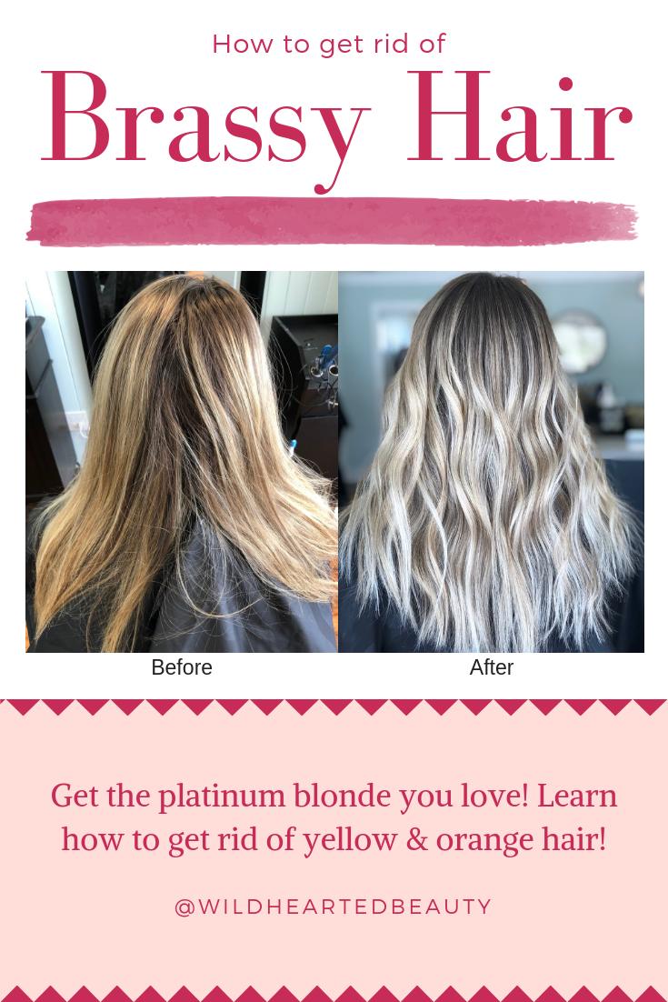 Before And After Using Purple Shampoo Toner For Orange Hair Orange Hair Brassy Hair