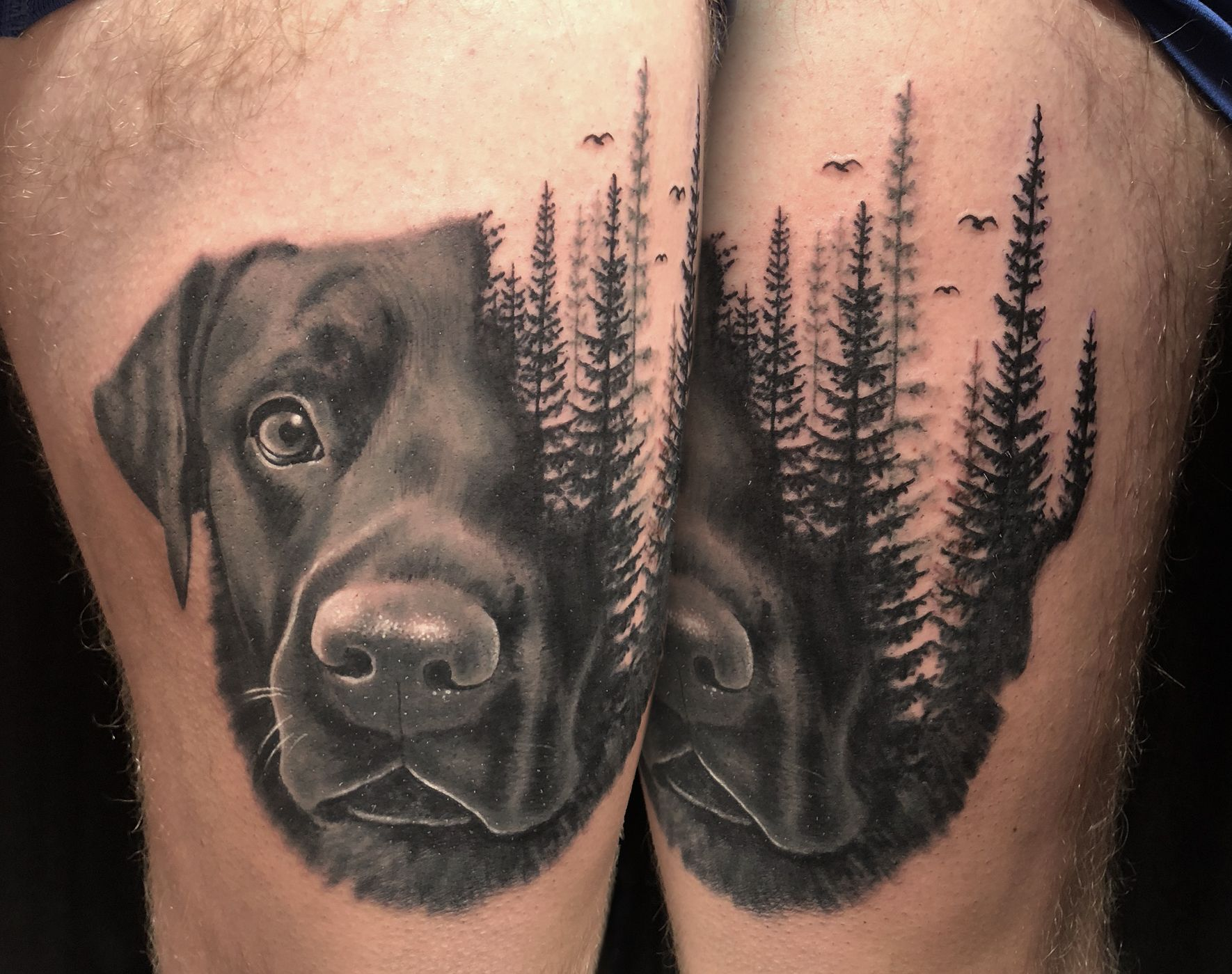Westend Tattoo Westendtattooandpiercing Tattoo Dog Love Dog Face Tattoo Tree Tattoo Realistic Tat Dog Portrait Tattoo Dog Tattoos Tattoos For Dog Lovers