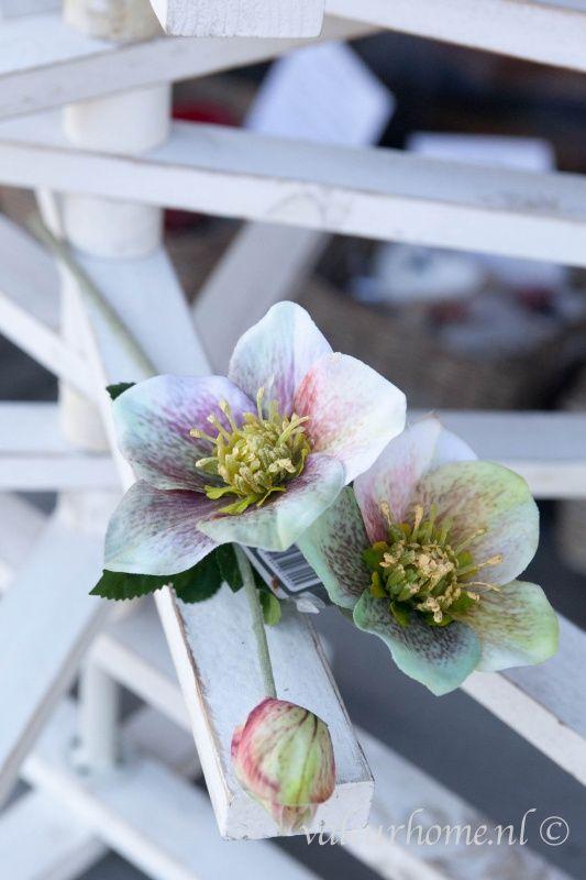 Silk ka helleboris 34 artificial flower pinterest silk ka helleboris 34 silk flowers mightylinksfo