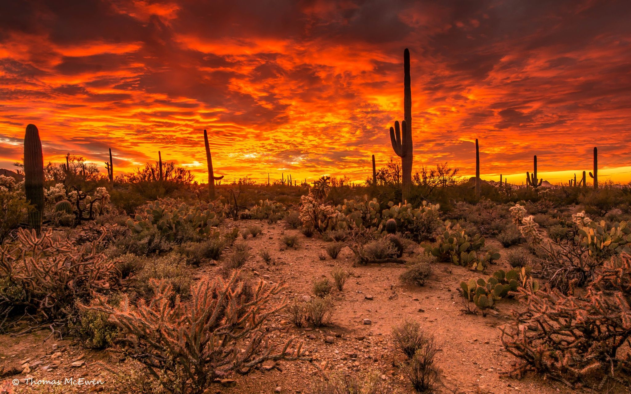 ***Tucson, Arizona - Photograph Western Sunset by Thomas McEwen on 500px