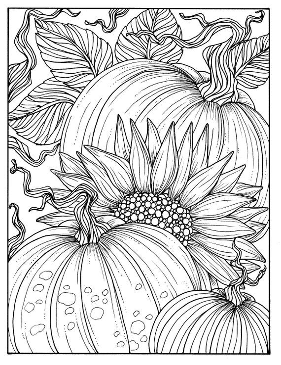 5 Pages Fabulous Fall Digital Downloads to Color Punpkins, crows, sunflowers, gourds, squirrel, thanks, autumn,