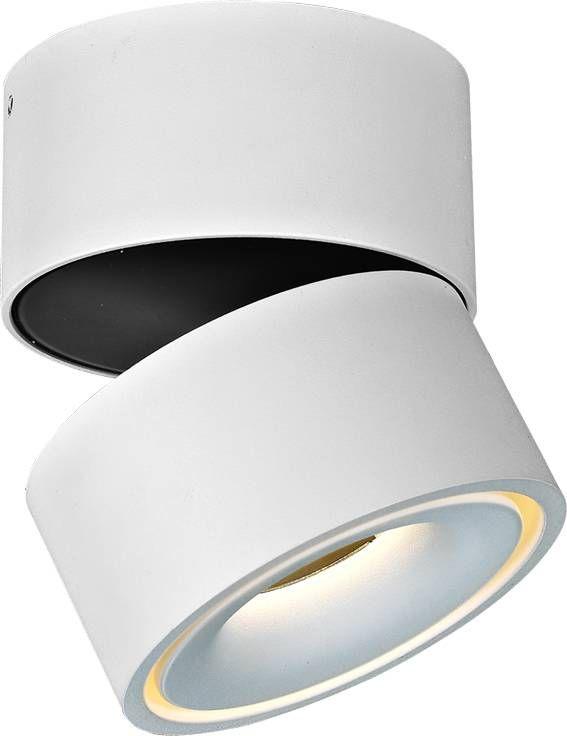 LED verlichting plafond 9W richtbaar | Design verlichting ...