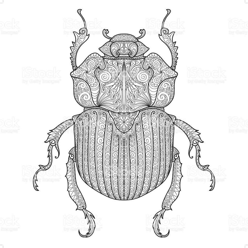 A Beetle Coloring Design Insect Coloring Pages Doodle Patterns