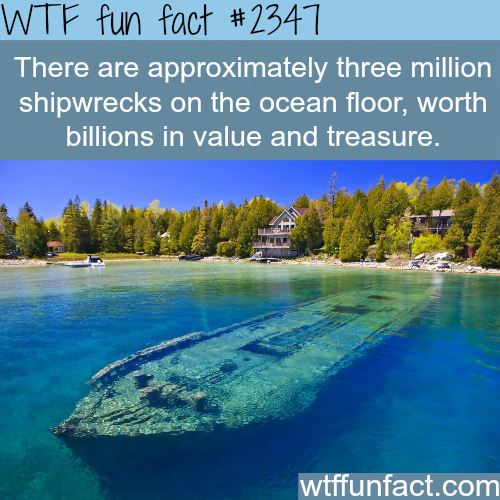 Image result for funny shipwreck