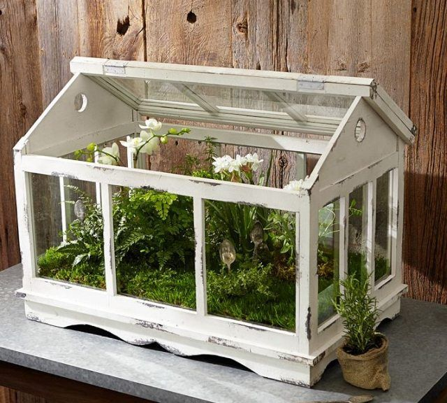 glass teapot terrarium mini gewaechshaus holz weiss shabby chic gardening pinterest. Black Bedroom Furniture Sets. Home Design Ideas