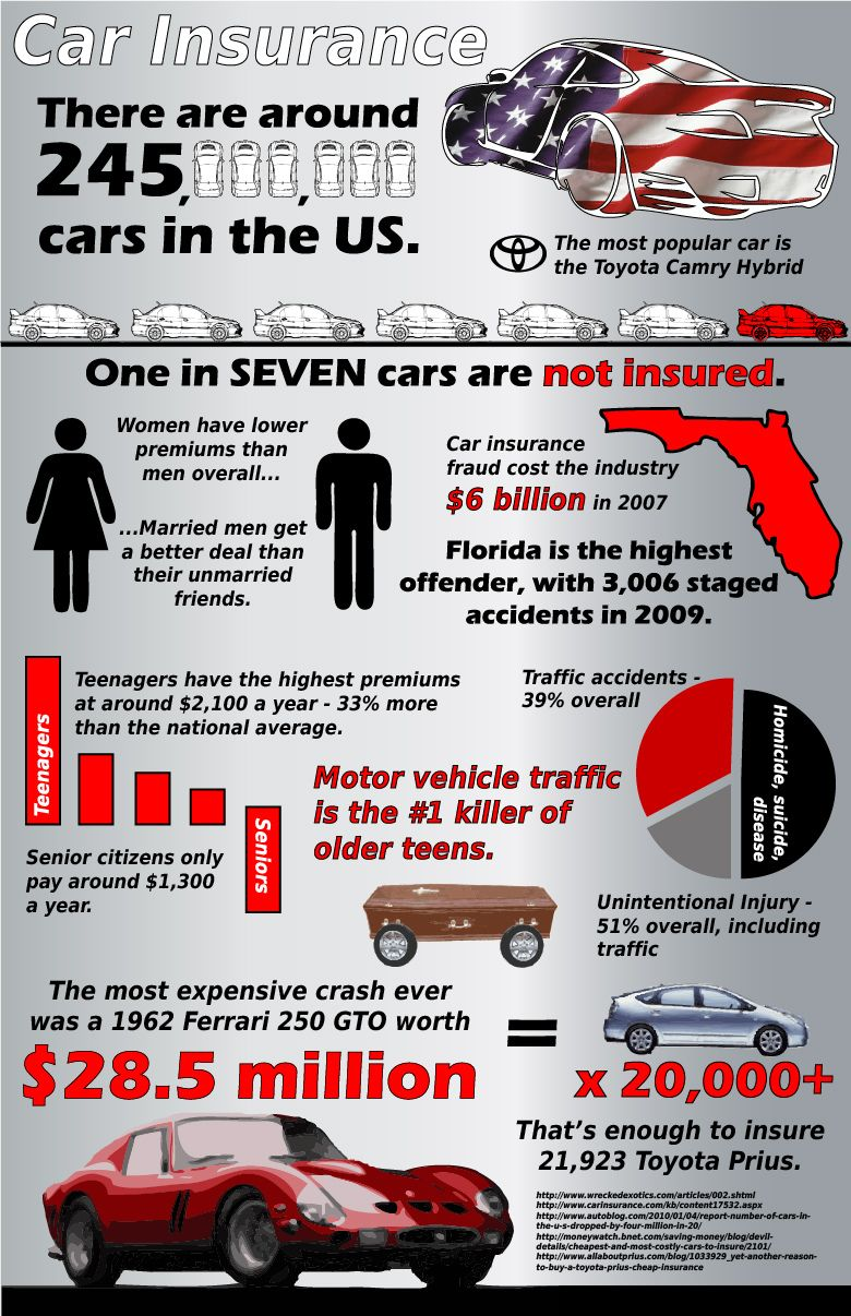 Car Insurance In The United States Health Insurance Infographic