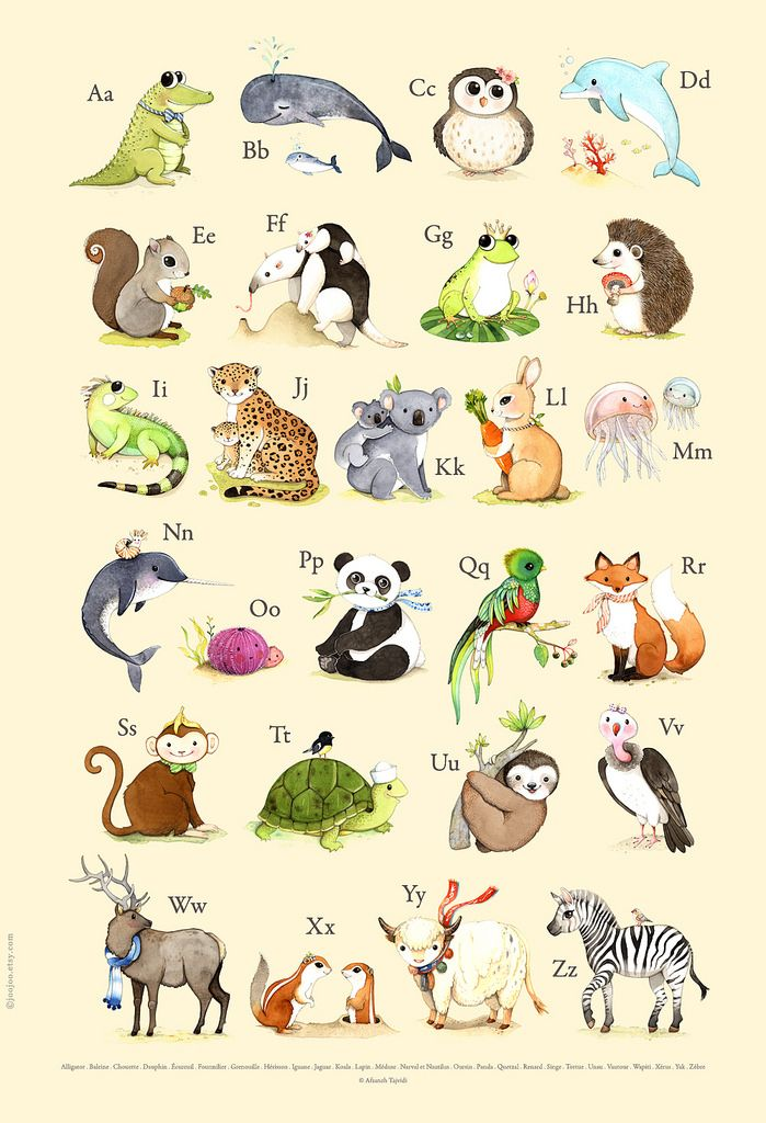 French Abc Animals French Alphabet Alphabet Poster Animal Drawings