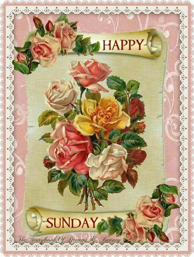 Vintage Sunday Blessings🌹 | Happy sunday, Floral wreath, Beautiful images