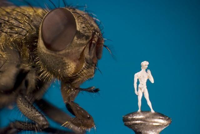 Microscopic Artwork by Willard Wigan | Mental Floss