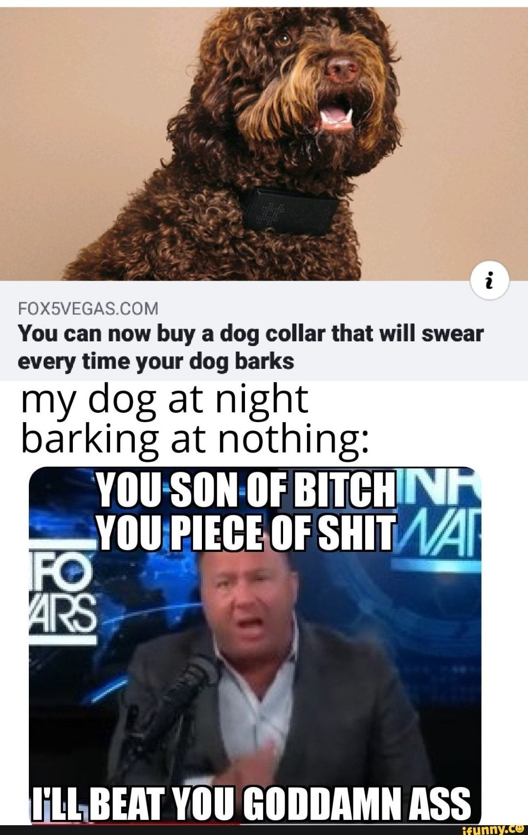 You can now buy a dog collar that will swear every time your dog barks my dog at night barking at nothing: ELLBEAT YOU GODDAMN ASS - )