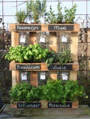 pallet met kruiden jardinera vertical de pallet reciclados para plantas para cocinar projecten van de ginkgo