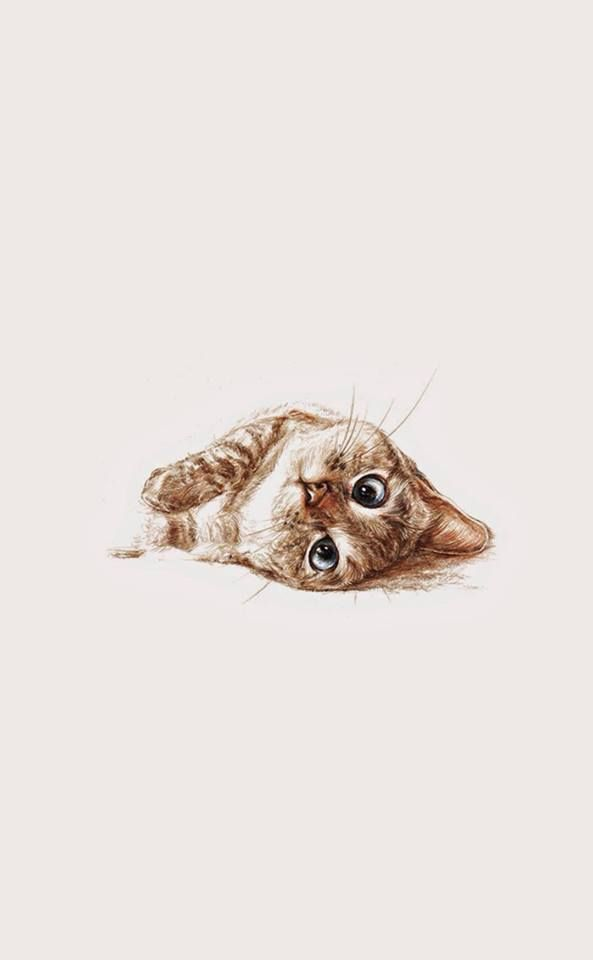 Pretty sure this is Nala Cat                   cool art   Pinterest     Pretty sure this is Nala Cat