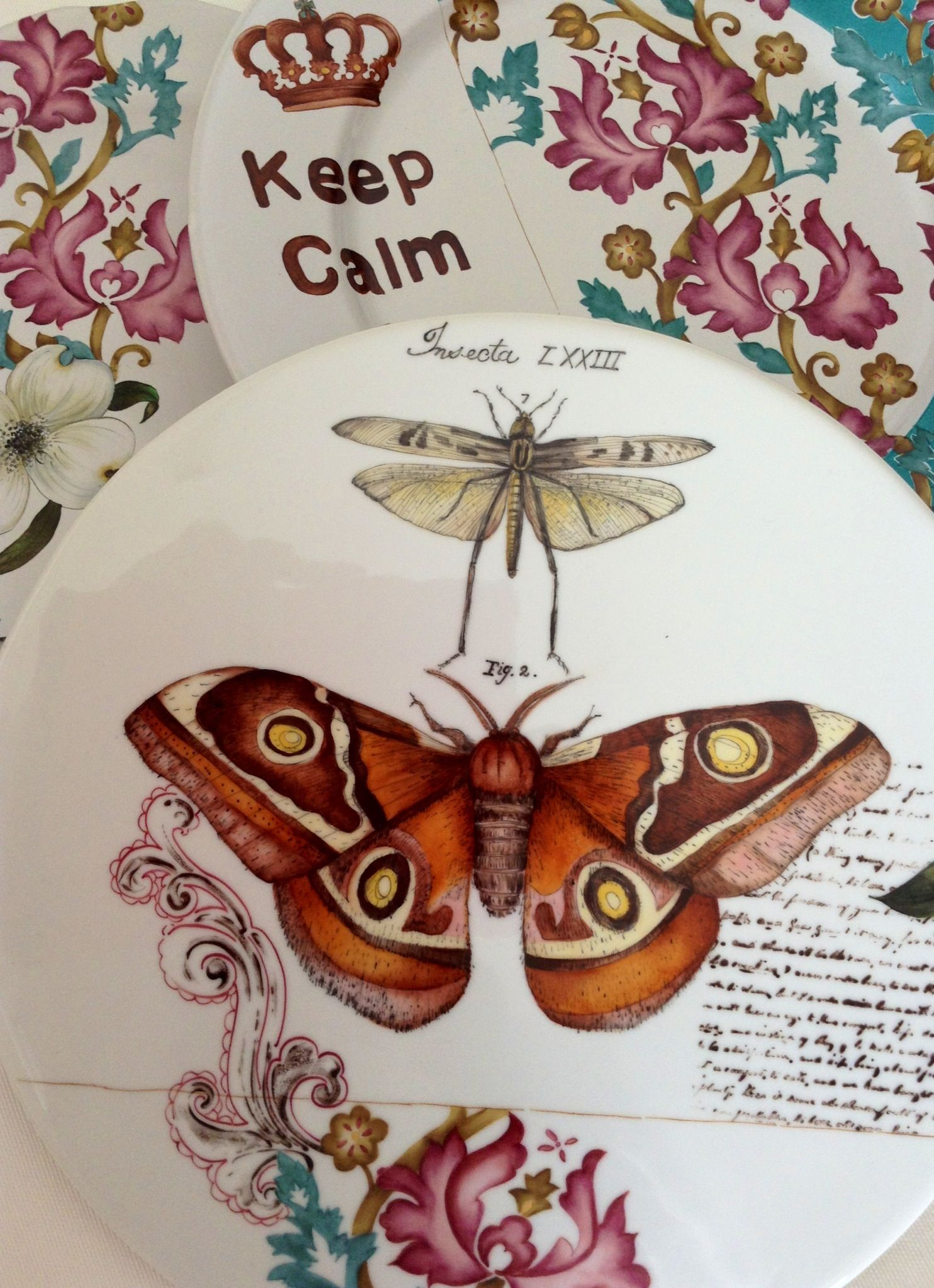 proyecto mural de platos papillon et insectes. Black Bedroom Furniture Sets. Home Design Ideas