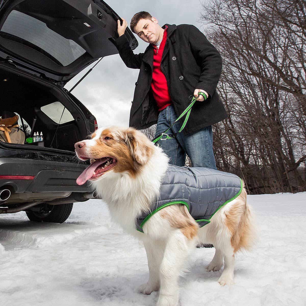 Kurgo Loft Reversible Dog Jacket Green And Gray With Same Day Shipping Baxterboo Dog Jacket Dog Winter Clothes Dog Clothes [ 1200 x 1200 Pixel ]