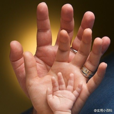 The Three Hands Father Mother And The Child Photography