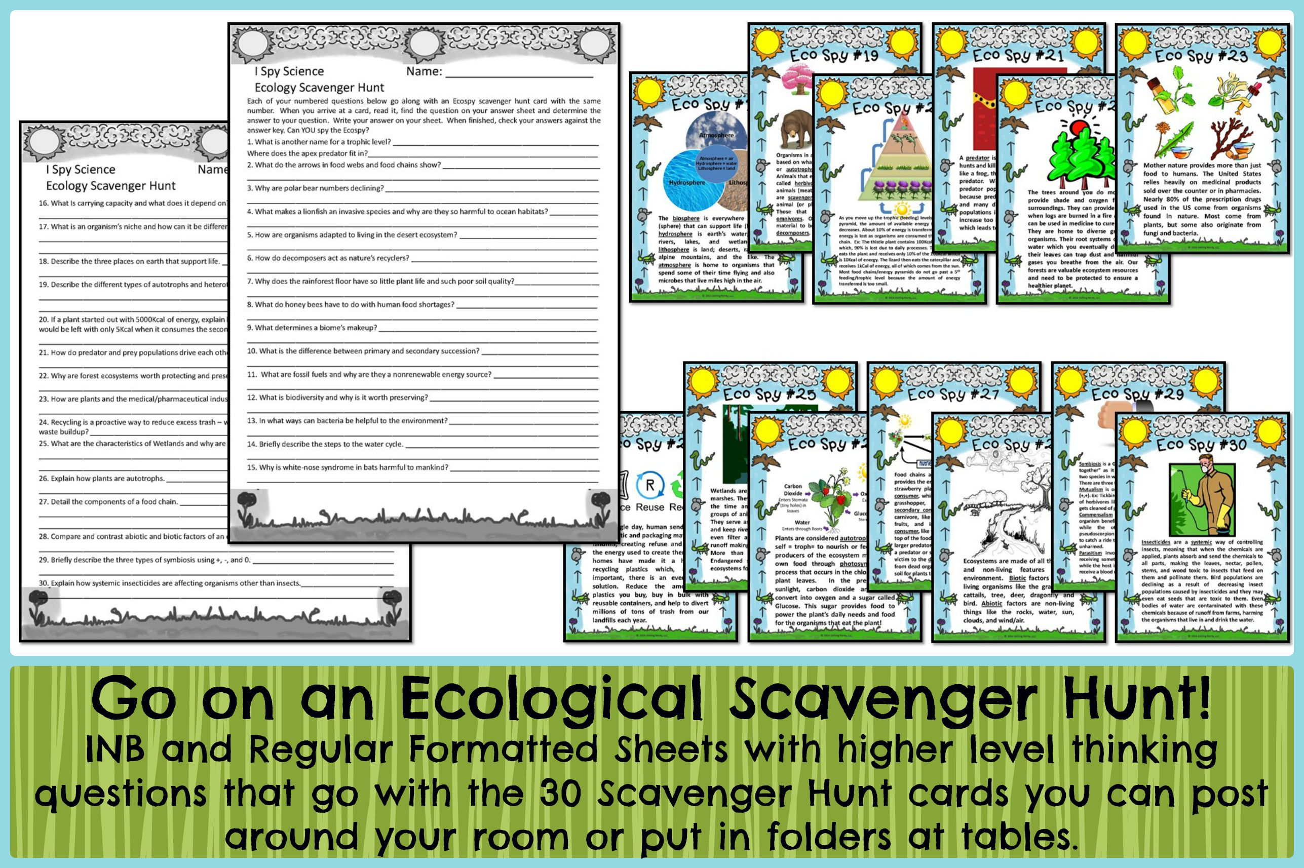 Ecology Scavenger Hunt Review Activity Distance Learning Digital Lesson Ecology Life Science Lessons Life Science Activities [ 1714 x 2574 Pixel ]