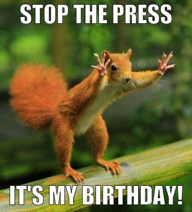 Top 100 Original And Funny Happy Birthday Memes Animal Quotes Wildlife Quotes Funny Animal Quotes