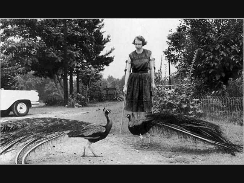 flannery o connor and two of her many peacocks