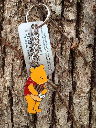 Pooh Travel Bug #travelbugs