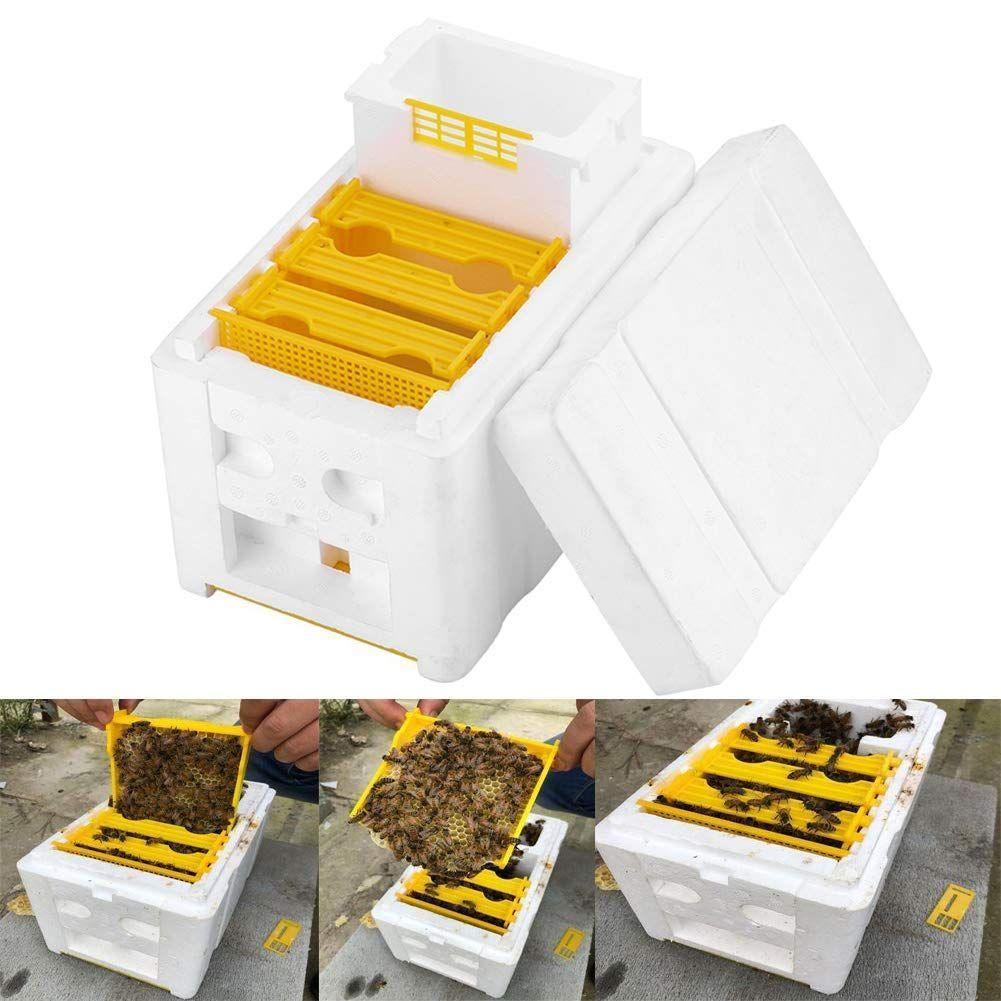 Shop Beekeeping World UK Bee keeping, Bee hive, Flow
