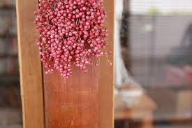 Pink Pepperberry All Year Types Of Flowers Pink Garden Pink Flowers