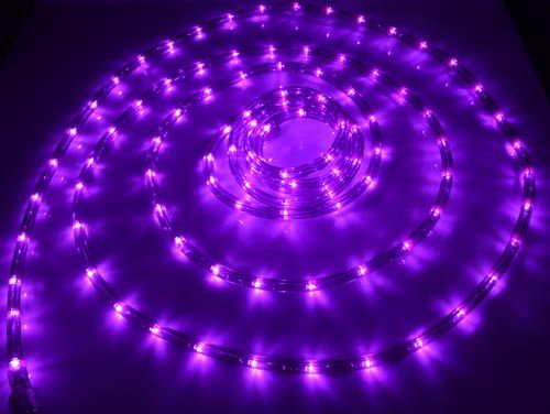 Purple Rope Lights Mesmerizing 18' Led Purple Rope Lights  $2721  $2885 At The Purple Store Design Ideas