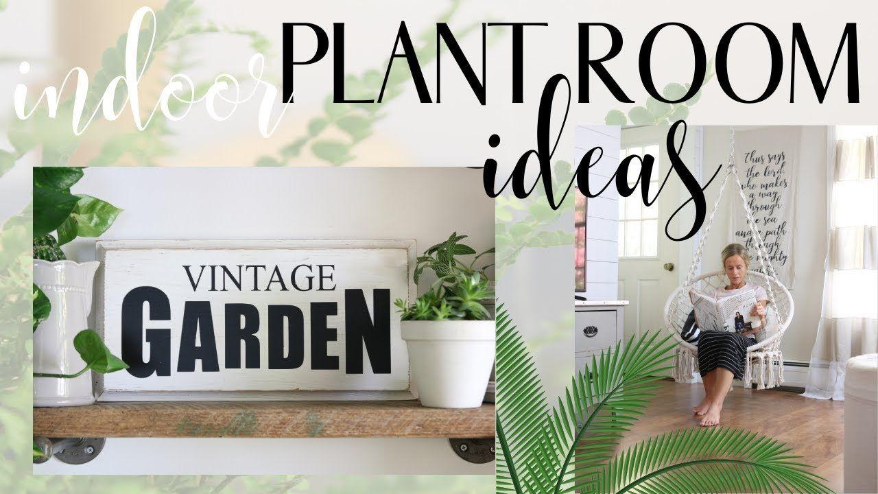 17 plants Room water ideas