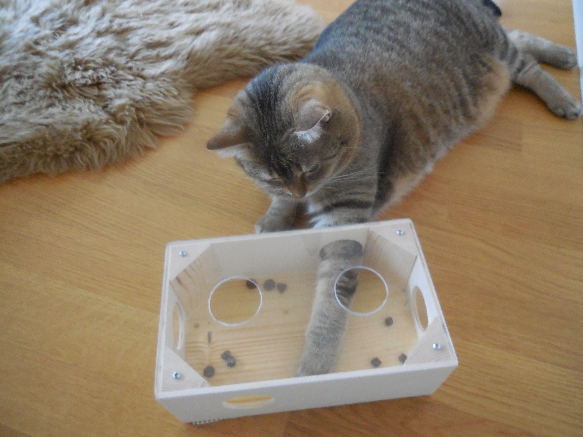 Intelligenzspielzeug in verschiedenen Größen als Fummelbrett Spielbox oder Intelligenzturm erhältlich. Nahrungsaufnahme durch Geschicklichkeit. #katzengeburtstag