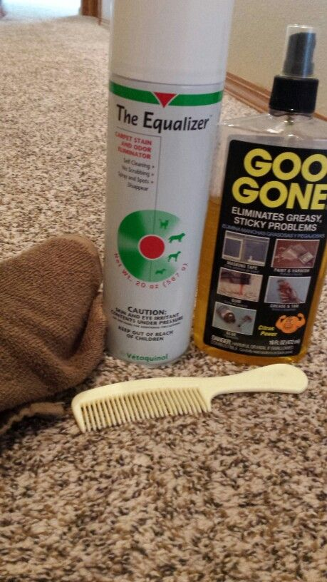 Silly Putty Stuck In Carpet Spray The Spot With Goo Gone And Use A Wide Toothed Comb To Get The Majority How To Clean Carpet Carpet Spot Cleaner Carpet Sprays