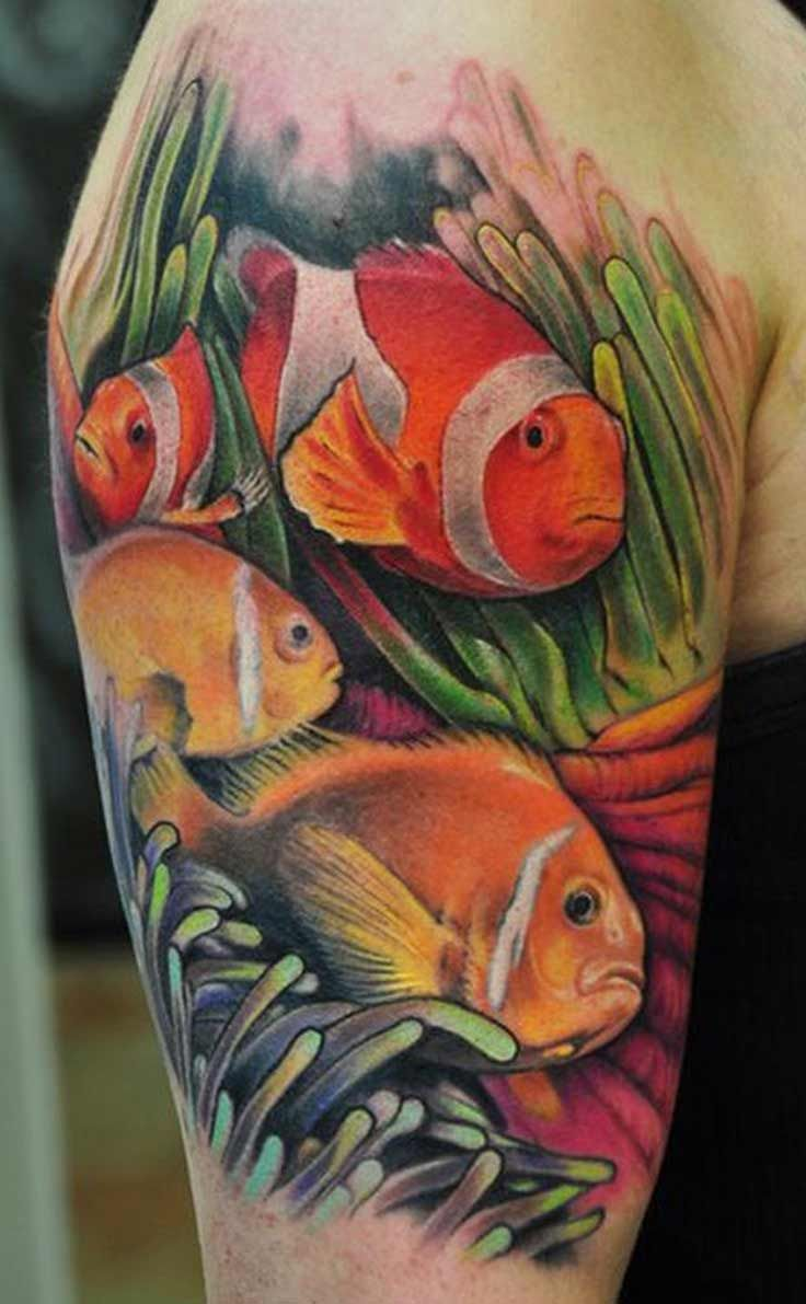A splash of color is what this arm clownfish is all about. The sea ...